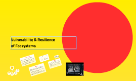 Copy of Vulnerability & Resilience