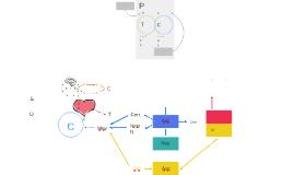 Copia de Estructura de la decisión