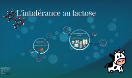 L'intolérance au lactose