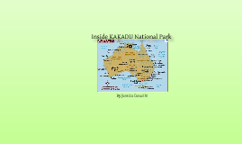 Inside Kakadu National Park
