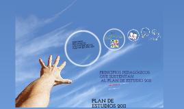 Copy of PRINCIPIOS PEDAGÓGICOS DEL PLAN DE ESTUDIOS 2011