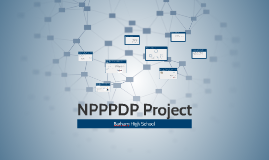 NPPPDP Project