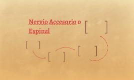 Nervio Accesorio o Espinal