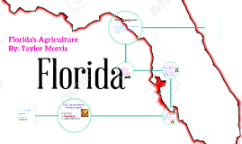 Copy of Florida Agriculture