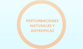 Copy of PERTURBACIONES NATURALES Y ANTROPICAS