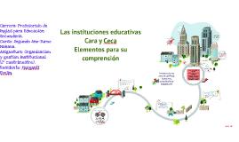 Copy of Las instituciones educativas de cara y ceca