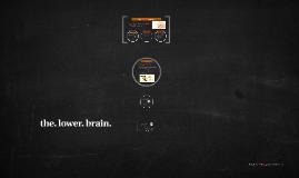 The Lower Brain