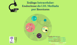 Tráfego Intracelular: Endocitose do LDL Mediada por Recetores