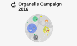 Organelle Campaign