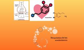 Bioquímica de los sentimientos