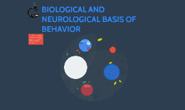 neurological based behavior Neurodevelopmental disorders are disabilities associated primarily with the functioning of the neurological  bpa exposure on brain development and behavior, based .