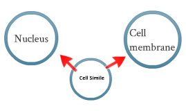 Cell Simile
