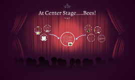 At Center Stage.....Bees!