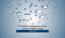 The effect of colored water on the growth of mold on bread