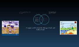 Carbon and nitrogen cycles venn diagram by kyle benefield on prezi ccuart Choice Image