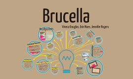 Copy of Copy of Brucella Presentation