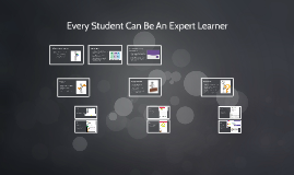 UDL & Expert Learners