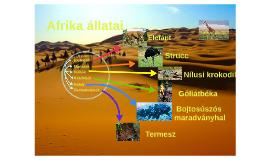 Afrika állatvilága