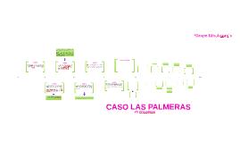 CASO LAS PALMERAS