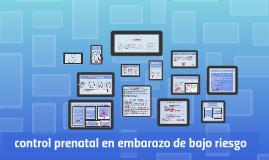 Copy of control prenatal en embarazo de bajo riesgo