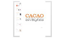 Portafolio Tecnico de Servicios CACAO