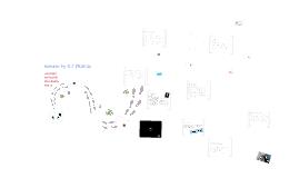 Copy of Psych120 Presentation-Wonder