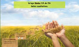Copy of Grupo Bimbo S.A de C.V: Estructura Organizacional.