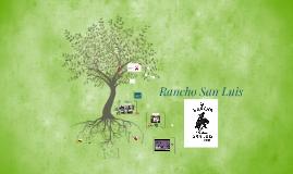 Copy of Fundo San Luis
