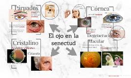 El ojo en la senectud
