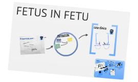 Copy of Fetus in Fetus
