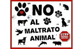 ¿Que es el Maltrato Animal?