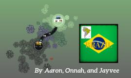 BRAZIL (ONLY INFORMATION)
