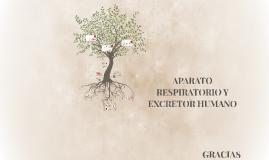 APARATO RESPIRATORIO Y EXCRETOR HUMANO