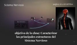 Principales estructuras del Sistema Nervioso
