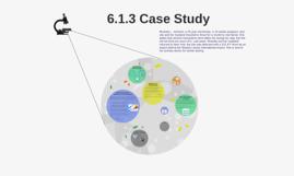 6.1.3 Case Study
