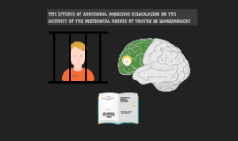 The effect of an enriched environment on the activation of the prefrontal cortex of youths in imprisonment