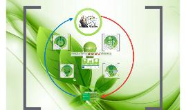 Presentación Iniciativa MIPYMES Verdes - BCIE