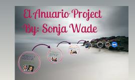 spanish 2 project