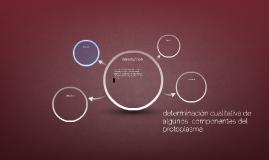 determinación cualitativa de algunos  componentes del protop