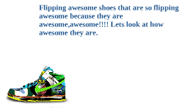 Flipping awesome shoes that are so flipping awesome