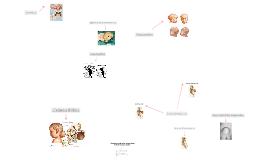 Copy of Copy of Enfermedades Congénitas del SNC