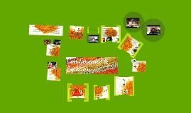 Copy of Condimentos & Especias