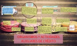 Copy of ORGANISMOS Y ACTIVIDADES AUXILIARES DE CRÉDITO