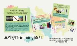 트리밍(Trimming)조사