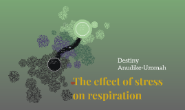 Cellular Respiration and Stress