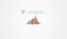 Copy of Proyecto de Telecomunicaciones