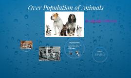 Over Population of Animals
