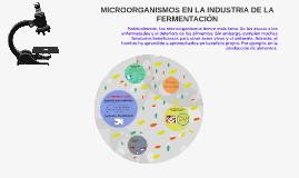 Copy of MICROORGANISMOS EN LA INDUSTRIA DE LA FERMENTACION