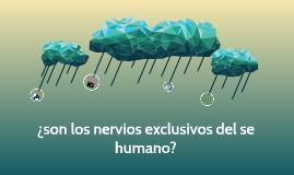 ¿son los nervios exclusivos del se humano?