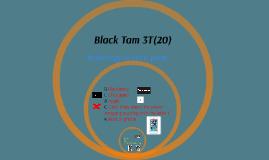 ICT 3T(20)
